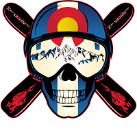 colorado ski skull sticker